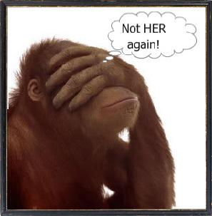 Monkey-12